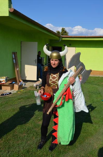 Z pohádky do pohádky 2015 Viking