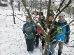 Výuka na sněhu