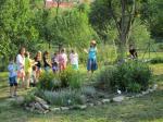 Výuka v přírodní zahradě