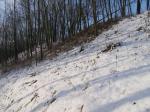 zima v Nížkovicích